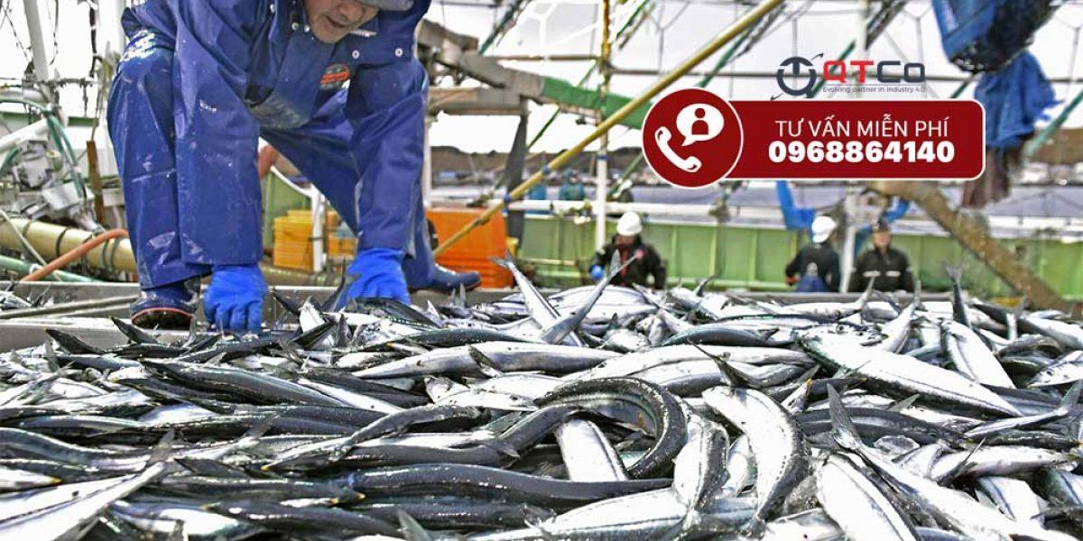 Dây chuyền chế biến cá tự động